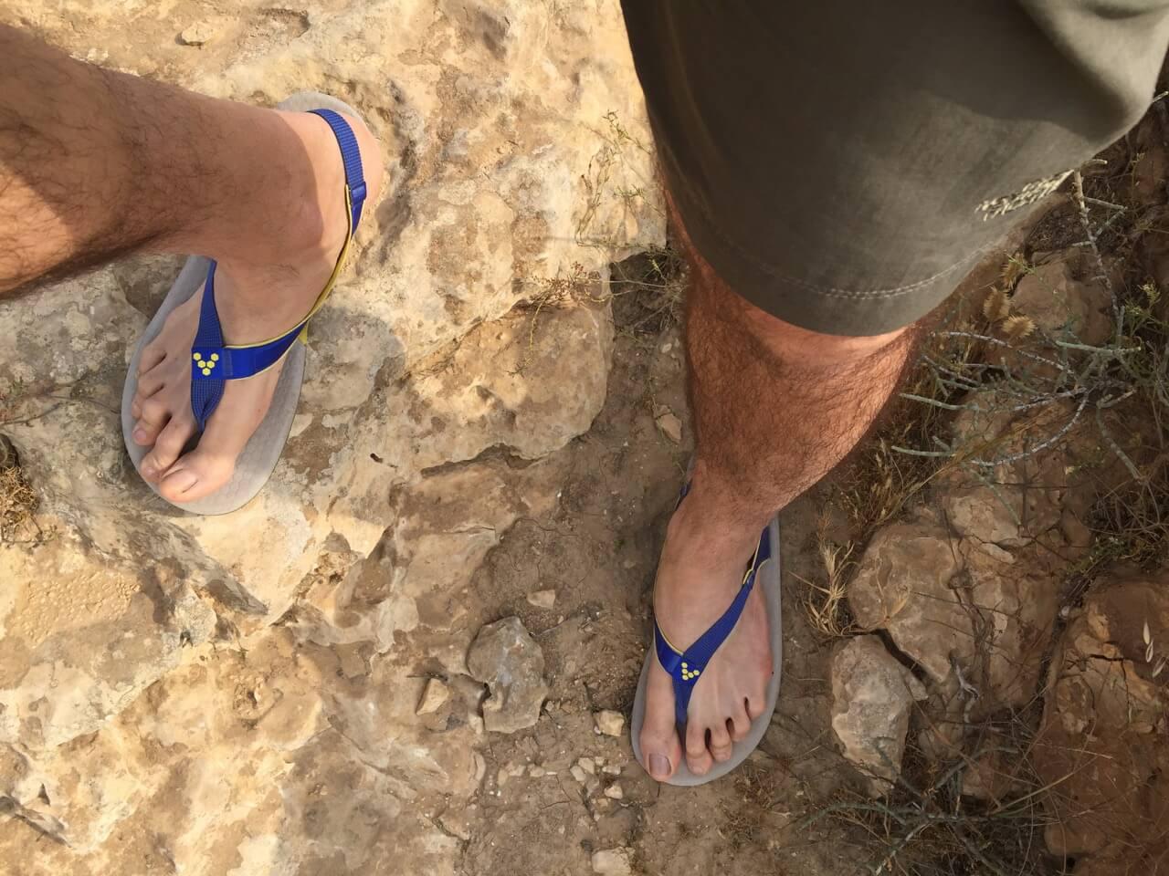 Vivo_Ulysses_Desert_step